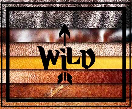 ВАЙЛД (Wild)